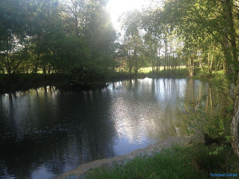 Unser privater Teich in der Nähe